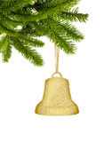 Golden Christmas bell on ribbon as decoration on green tree bran. Ch isolated on white background Stock Photography