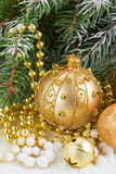 Golden christmas bow and evegreen tree Stock Photo