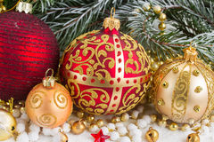 Golden christmas bow and evegreen tree Royalty Free Stock Photos