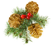 Golden Christmas cones with fir branch Stock Photography