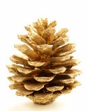 Golden Christmas fir-cone Stock Photo