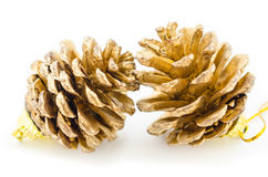 Golden Christmas fir-cone. Royalty Free Stock Images