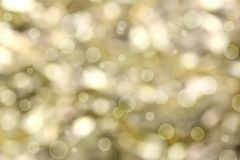 Golden Christmas light background Stock Photography