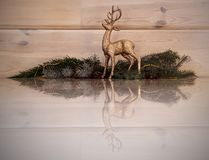 Golden, Christmas reindeer with a reflection in the floor. royalty free stock image