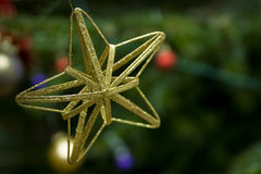 Golden christmas star. On the green tree royalty free stock images