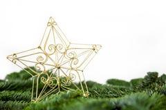 A golden christmas star. On fir branches stock photos