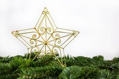 A golden christmas star. On fir branches stock photo