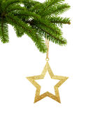 Golden Christmas star on green tree branch isolated on white royalty free stock image