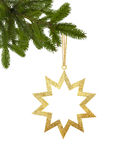 Golden Christmas star on green tree branch isolated on white. Background Stock Images