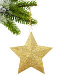 Golden Christmas star on green tree isolated on white. Background stock photography