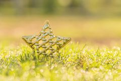 Golden Christmas Star in morning dew. Closeup Gold Star on the l. Awn with water drop in the morning day stock photo