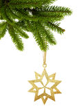 Golden Christmas star on ribbon on green tree branch isolated on. White background Royalty Free Stock Images