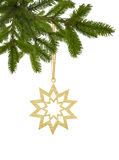 Golden Christmas star on ribbon on green tree branch isolated on. White background Stock Image
