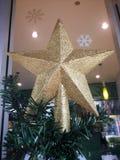 Golden Christmas star on Christmas tree. Golden Christmas star on Christmas tree royalty free stock image