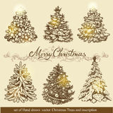 Golden Christmas trees. Royalty Free Stock Image