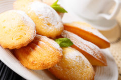 Golden classic Madeleine cookies with sugar powder and coffee ma. Golden classic Madeleine cookies with sugar powder and coffee close-up on a plate. horizontal royalty free stock photography