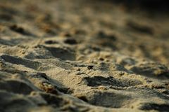 Golden clean sand stock photography