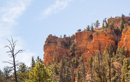 The Golden Cliff Royalty Free Stock Images