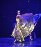 Golden clothes-Turkey belly dance-the Austria's world Dance Stock Photography