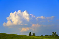 Golden cloud over the meadow Royalty Free Stock Image