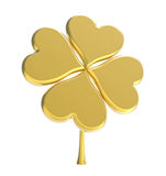 Golden clover Royalty Free Stock Photo