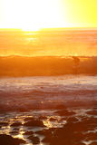 The Golden Coast Royalty Free Stock Photos