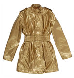 Golden coat Stock Photography