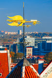 Golden Cockerel weather vane of Tallinn, Estonia Stock Image