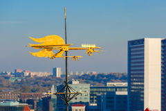Golden Cockerel weather vane of Tallinn, Estonia Royalty Free Stock Image
