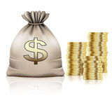 Golden Coins and Bag with the Money and on white background. Dol Stock Image