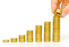 Golden coins / business growth Stock Image
