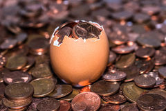 Golden coins. Droppings from an egg Royalty Free Stock Photography