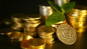 Golden coins and green leaf of sprout on black background. Success of finance business, mortgage and banking concepts. Golden coins and green leaf of sprout on stock footage