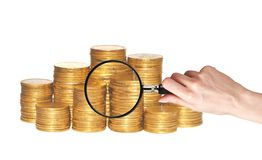 Golden coins and hand holding magnifying glass isolated Royalty Free Stock Images