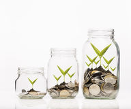 Golden coins and seed in clear jar over white background Royalty Free Stock Image