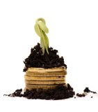 Golden coins in soil with young plant. Money Royalty Free Stock Images