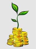 Golden coins stacks with money tree. Retro style  illustration. Stock Photo