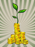Golden coins stacks with money tree, vector illustration Stock Photo