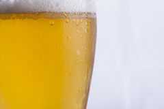Golden cold beer with white froth. Stock Photo