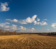 The golden color field. This photo was taken at the end of the day, and the sky was turning blue. The sun was setting west. Drummondville, Quebec, Canada Royalty Free Stock Images