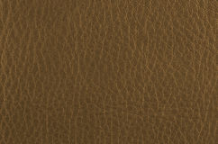 Golden color leather Stock Images