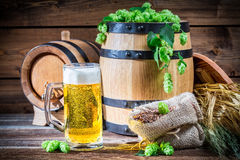 Golden color of light beers. On old wooden table stock photos