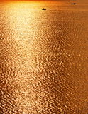 Golden color water surface. The water surface presents a piece of golden color under the setting sun illumination Stock Images
