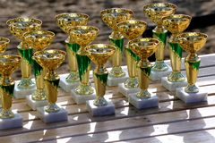 Golden colored trophies waiting for winners at an equestrian event summertime. Group of golden trophies championship awards in row outdoors stock photo
