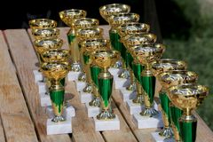 Golden colored trophies waiting for winners at an equestrian event summertime. Group of golden trophies championship awards in row outdoors stock photos