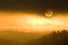 Golden colors of misty sunset Stock Image
