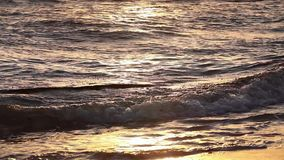 Golden colors on the waves. Sunrise. Ocean. stock video footage