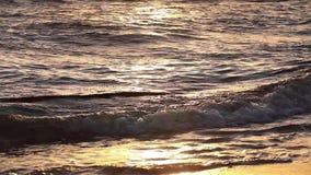 Golden colors on the waves. Sunrise. Ocean. Golden colors on the waves. Sunrise. Ocean stock video footage