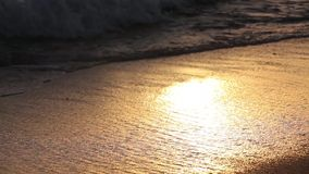 Golden colors on the waves. Sunrise. Ocean. Beautiful golden colors of the sunset in a tropical beach, waves crashing against the white sand of this idyllic stock footage