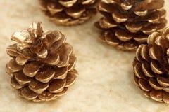 Golden cones decorative frame Royalty Free Stock Photo